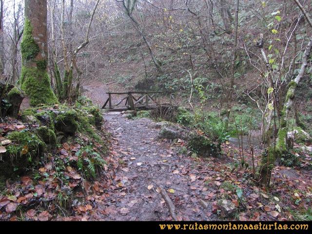 Ruta de las Xanas y Senda de Valdolayés: Puente sobre el río