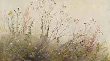 La levedad de las flores silvestres y la belleza del paisaje