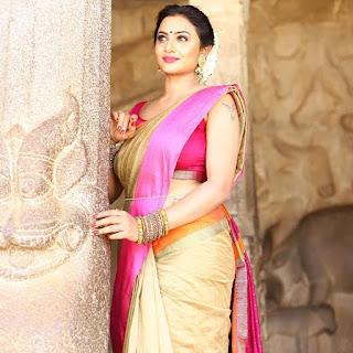 Janani Ashok kumar latest saree photos Navel Queens