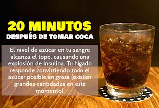 Que sucede en tu organismo cuando bebes Coca