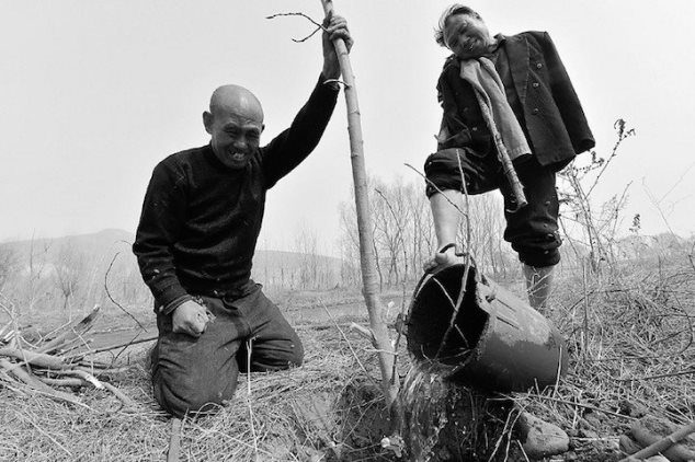 Un ciego y un hombre sin brazos plantan 10.000 árboles.