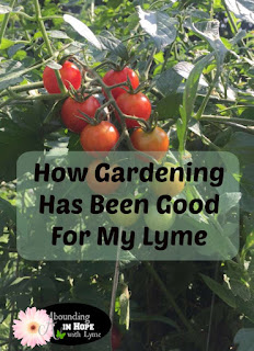 Gardening, Health, Lyme