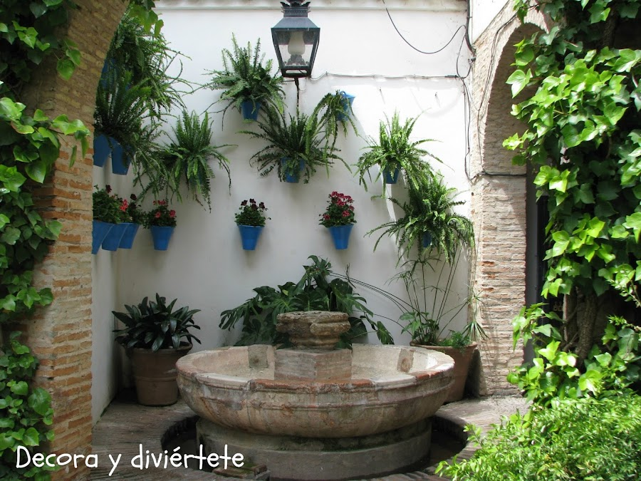 Dyd decora y divi rtete for Patios decorados con plantas