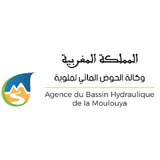 agence de bassin hydraulique de la moulya