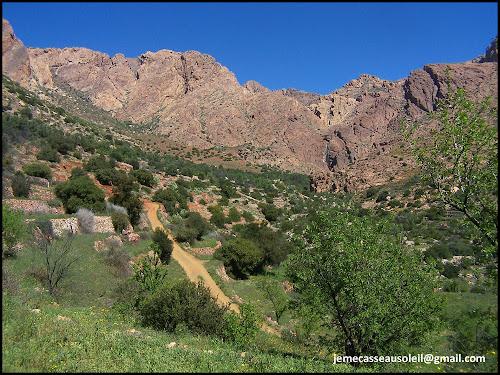 Jebel Lekst près de Tafraout
