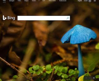 Ricerca Bing