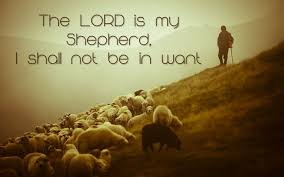 I shall not want Psalm 23:1
