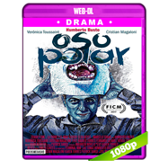 Oso Polar (2017) WEB-DL 1080p Latino