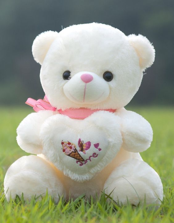 Sweet White Color Teddy Bear Photo