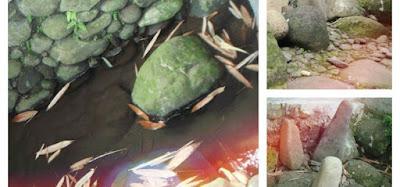"Image ""Sumur Jalatunda"" (Foto: hallobogor.com)"