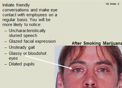 reasonable suspicion training what a pot smoker with glassy eyes looks like