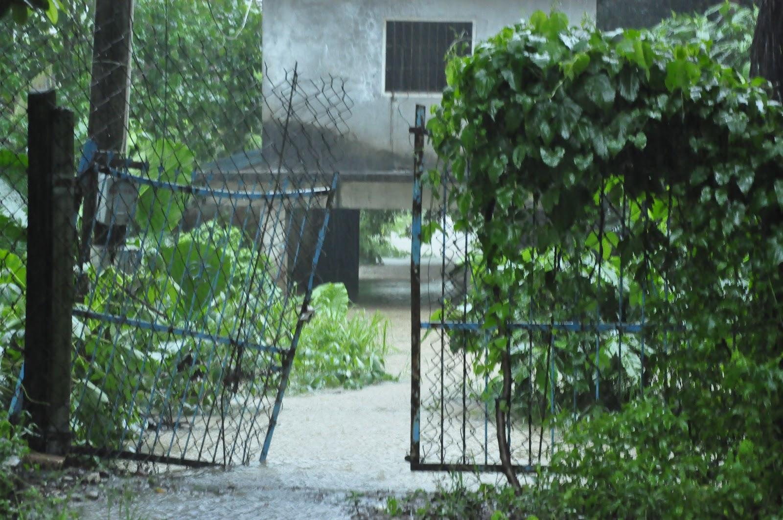 五溝水守護工作站: 611水災-五溝水災情說明 - 野溪滯洪