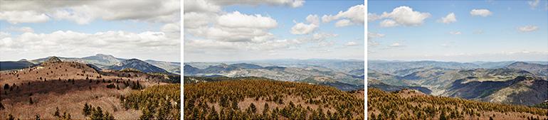 Triptyque panoramique de François Lacour de la forêt communale de St-Martial depuis le suc du Clapas