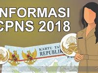 SIMAK! INFORMASI PENTING TERKAIT SELEKSI CPNS TAHUN 2018