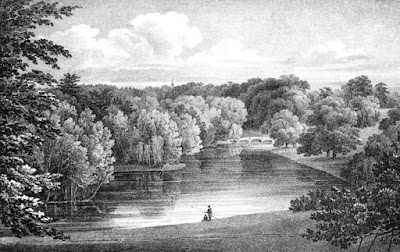 View from the Gothic Temple at Pains Hill  from Select Illustrations of the County of Surrey by Prosser (1828)