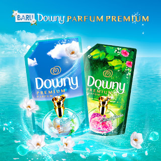 Downy Parfum Premium 2019