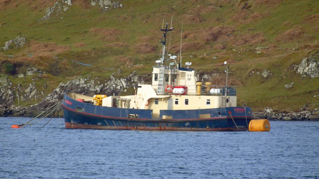 Clyde naval gazing 26 03 17 02 04 17 - Vezel tuinders ...