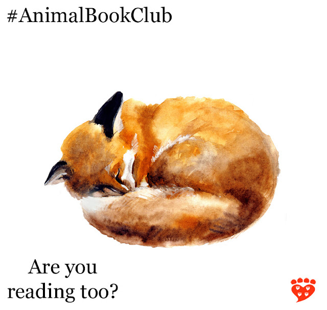 A fox curled up asleep for the book club's choice How To Tame a Fox by Lee Alan Dugatkin and Lyudmila Trut