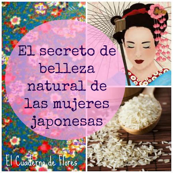 belleza - Magazine cover