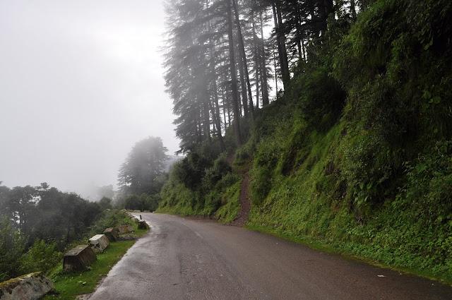 mussoorie dhanoulti road