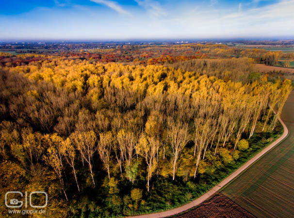 Photo: Indian summer from above