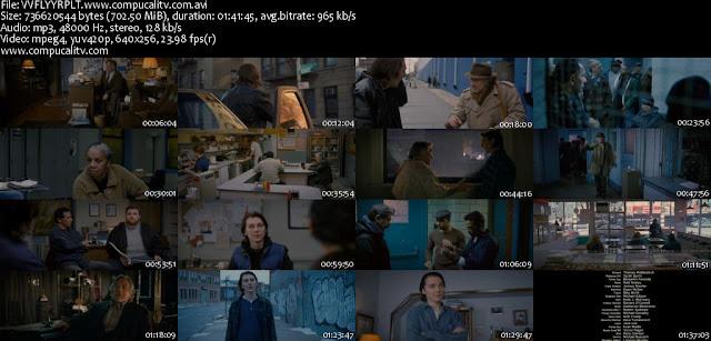 Viviendo como un Flynn DVDRip Español Latino Descargar 1 Link 2012