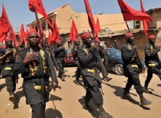 Group Advocates Nationwide Ban On IMN