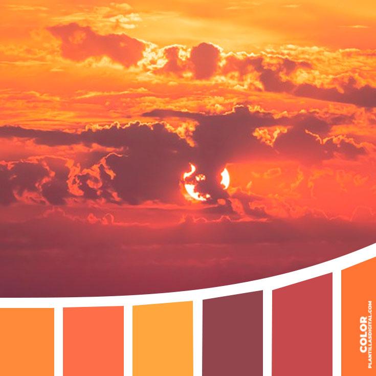 color_385