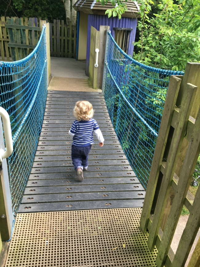 toddler-running-across-suspended-bridge-at--Perrygrove-Railway-adventure-playground