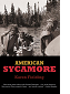 American Sycamore by Karen Fielding book cover