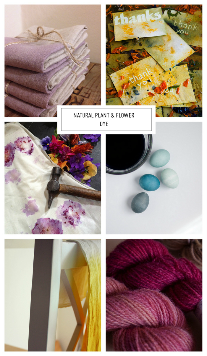 Weekend Inspiration: Natural Plant & Flower Dye