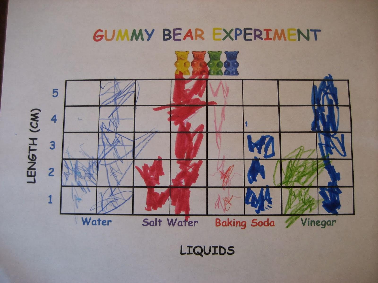 Living Our Homeschool Life A Balancing Act Of Faith Gummy Bear Experiment