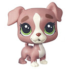 Littlest Pet Shop Boxer Pets in the City Pets