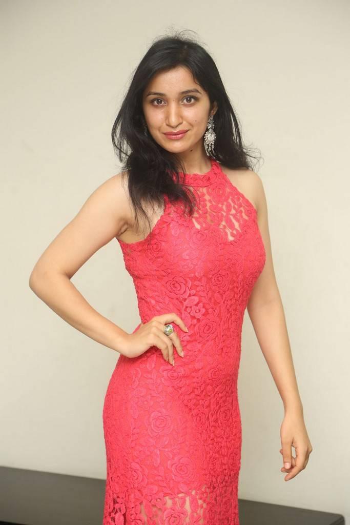 Beautiful Telugu Girl Skshi Kakkar Long Hair Stills In Pink Dress At Movie Poster Launch