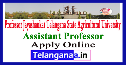 PJTSAU Assistant Professor Vacancies Apply Online 2017