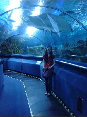 wisata aquarium klcc kuala lumpur malaysia