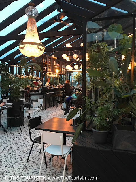 Café Herbārijs. Dzirnavu iela 67, Centra rajons, Rīga,  Latvia. green plants