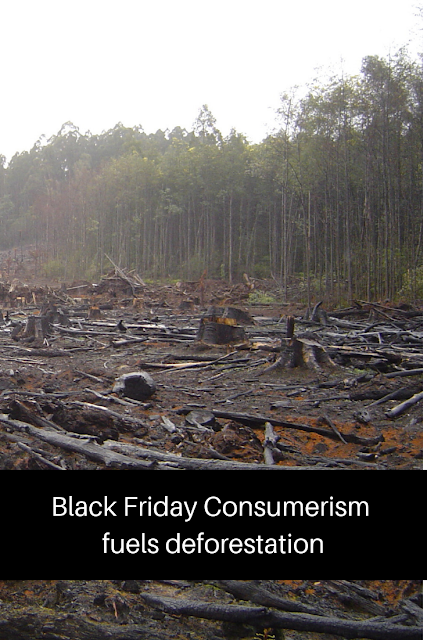 The link between shopping and deforestation