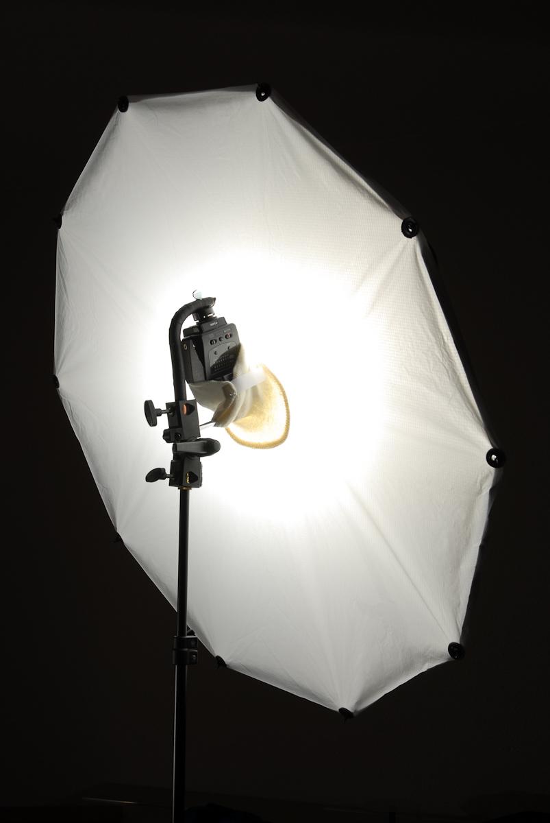 Umbrella Light Setup