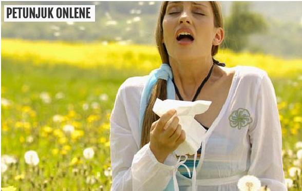 obat alergi, obat demam