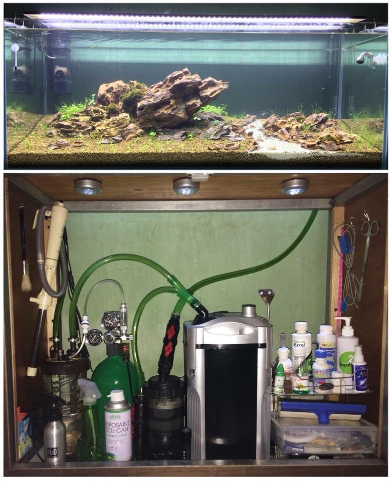 Van điện mufan gắn bình CO2 trong hồ thủy sinh của bạn Giang Nguyễn