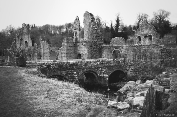 aliciasivert alicia sivertsson Fountains Abbey ruin ruins church monastery priory convent friary henry VIII tudor tudors house buildning black and white ruiner kloster kyrka hus byggnad