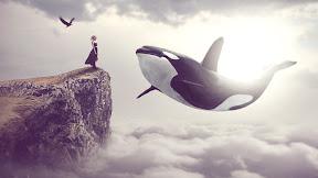 Big Whale - Photoshop Manipulation Tutorial Processing