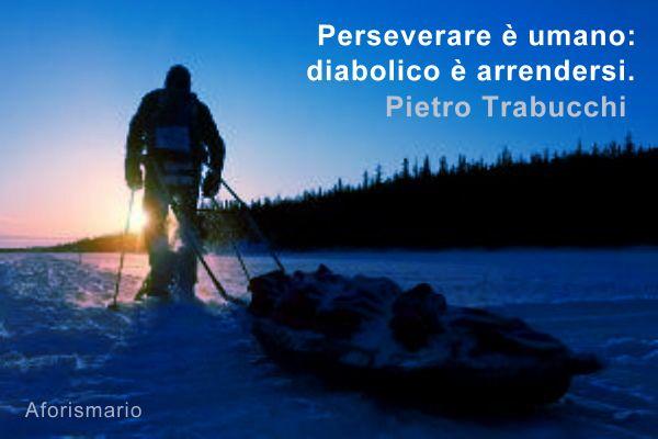 Amato Aforismario®: Perseveranza e Costanza - Frasi per Perseverare CM17
