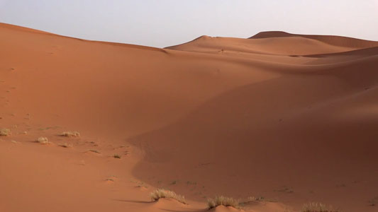 تنزيل فيديو مصور للصحراء بدقه عاليه للمونتاج, Video for the desert HD Stock Footage