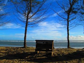 Ada Kenangan Indah di Pantai Panjang Bengkulu