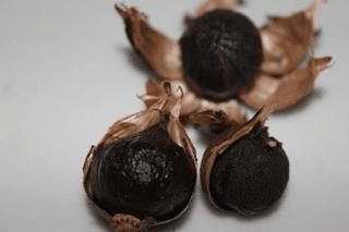 cara membuat bawang hitam dengan magic com harga bawang hitam cara mengkonsumsi bawang hitam efek samping bawang hitam bawang hitam bahaya testimoni bawang hitam manfaat bawang hitam untuk kecantikan gambar bawang hitam