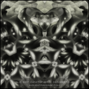 Derivative by Design 1 - Cobra Copyright 2017 Christopher V. DeRobertis. All rights reserved. insilentpassage.com