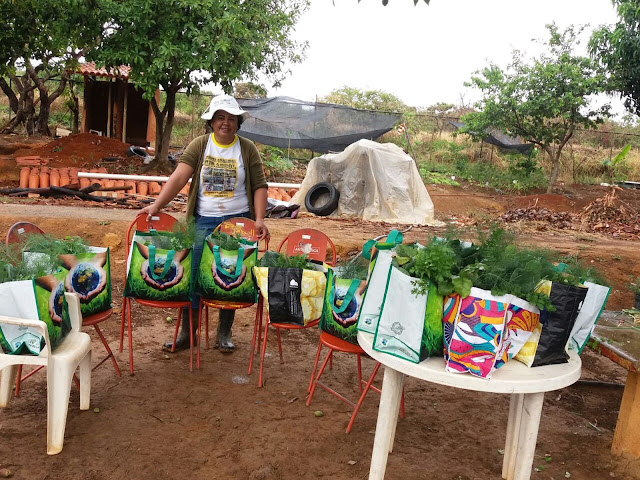 IFB oferece cursos de libras e agricultura familiar no DF