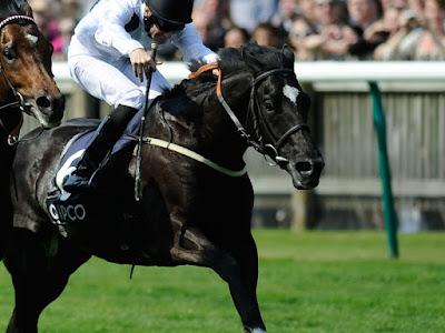 Free horse racing tips, racing tips, winning racing tips,